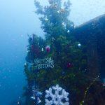 白浜クリスマスツリー