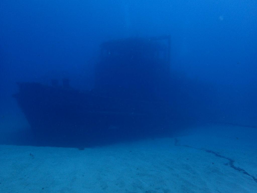 沈船ダイブ